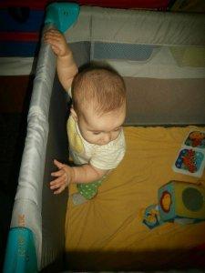 prenosne posteljice - izberi modro družina