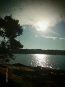 Oddih - Poreč (8) okolica