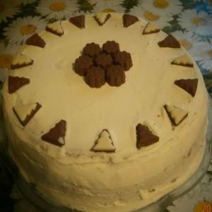 Torte za rojstni dan (19)