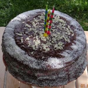 Torte za rojstni dan (3)